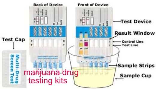 pot test