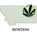 Montana,marijuana laws